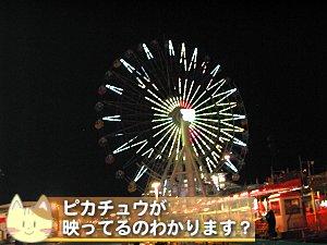 20100830_216797